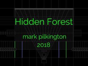Hidden Forest (2018)